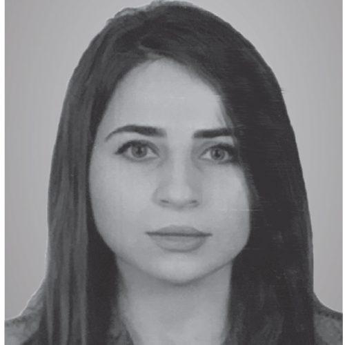 Hozhin Faris
